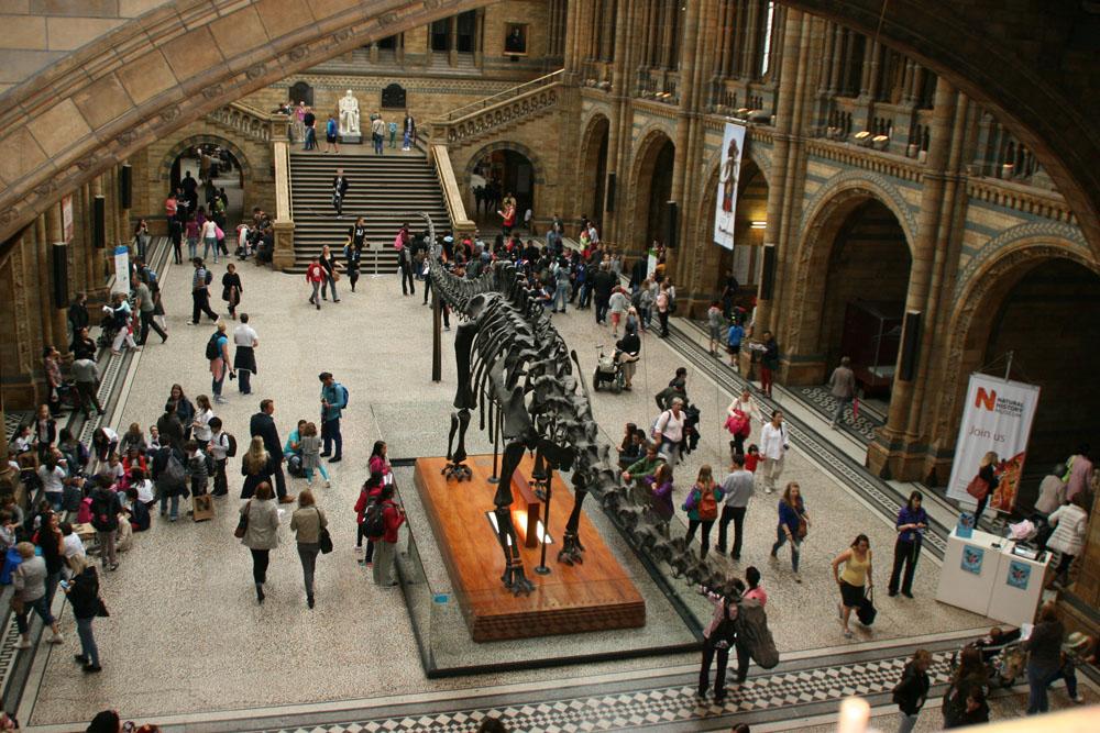 Лондон. Топ-10 достопримечательностей. Музеи