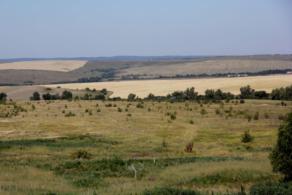 Хвалынский район