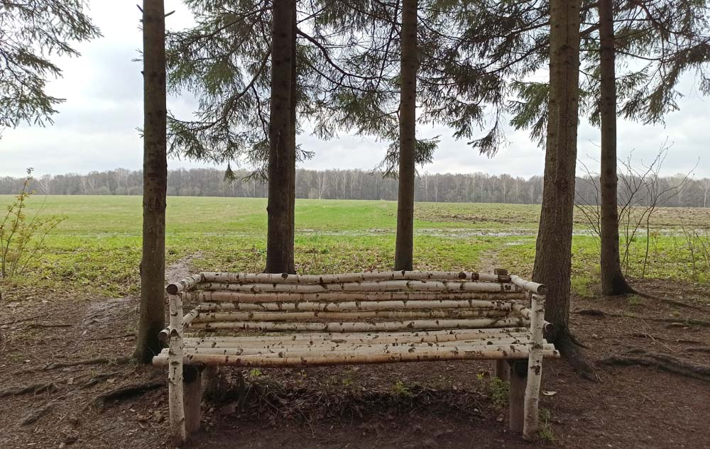Скамейка Толстого