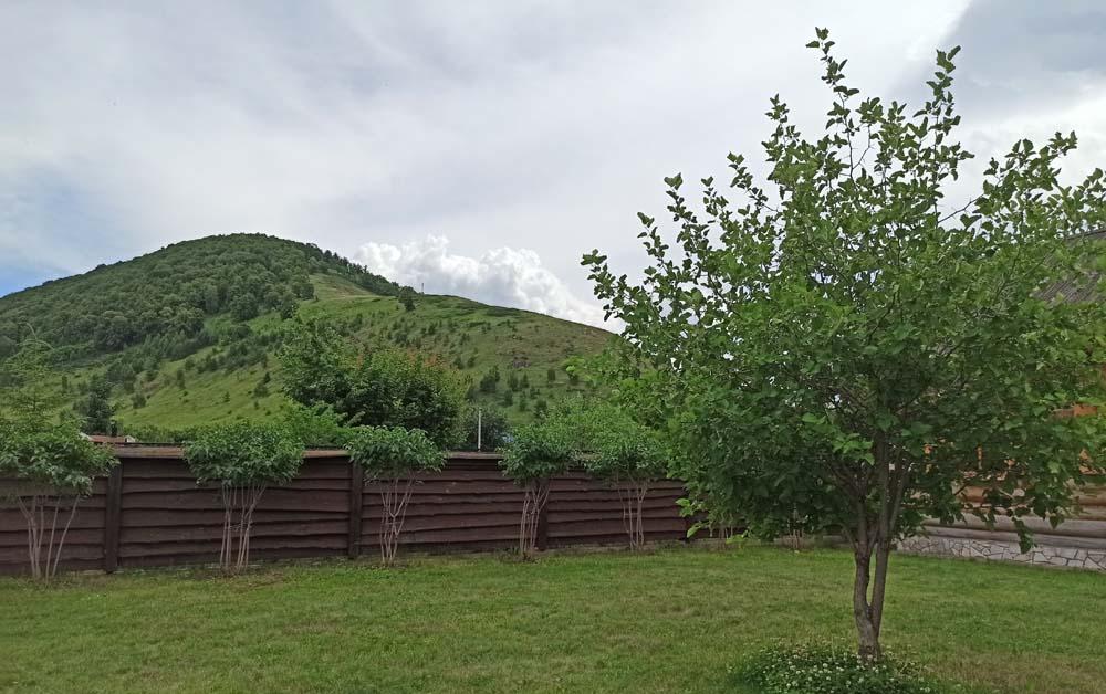 вид на Монастырскую гору