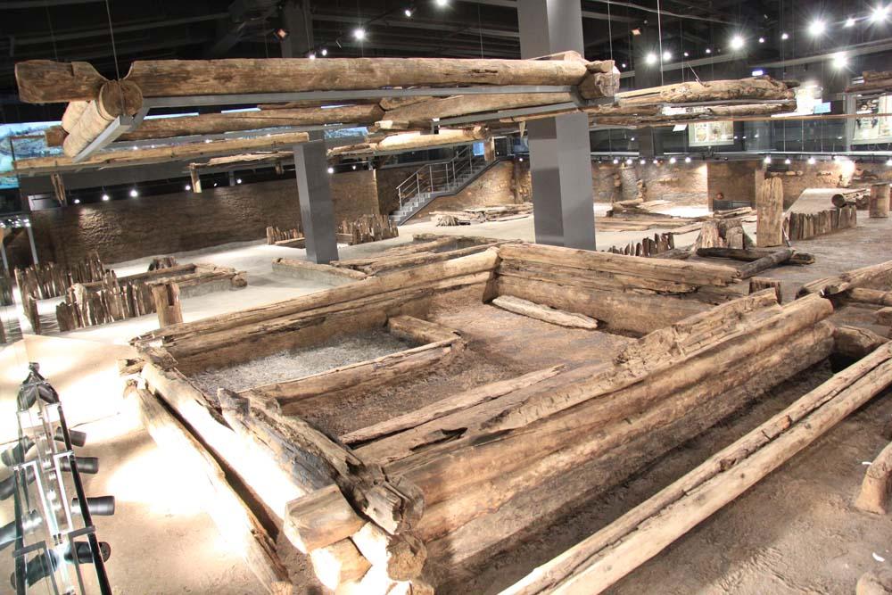 Музей археологического дерева